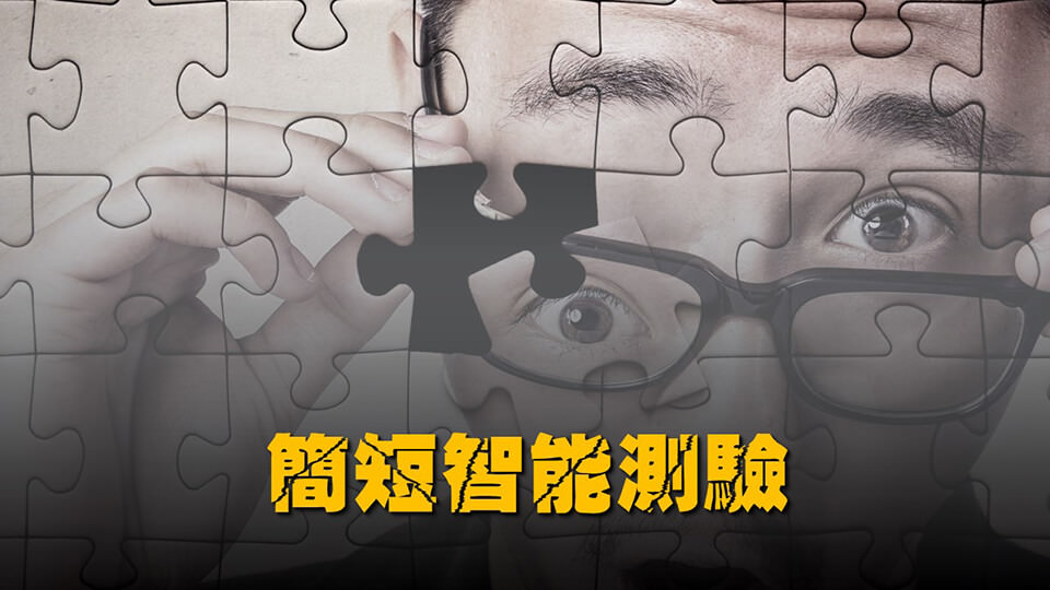 簡短智能測驗(Mini-Mental State Examination; MMSE)